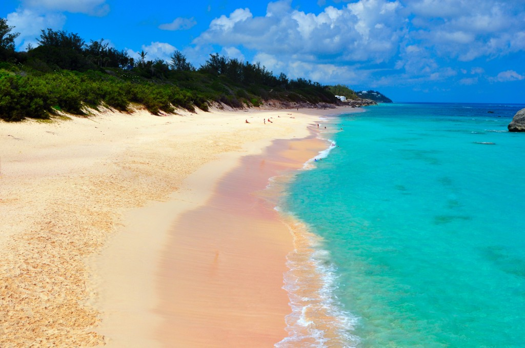 Island Trader Vacations Complaints Reviewed – Funny But True
